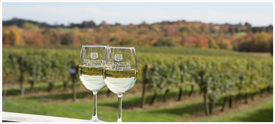 wine_frame2